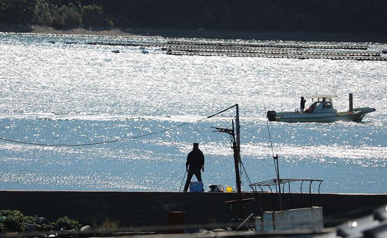 坂手島の釣り客